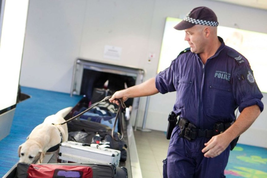 commonwealth importation of drug offences in South Australia